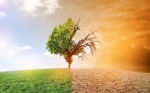 Conférence sur le changement climatique