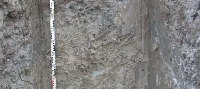 Etude des sols avec ouverture de fosses pédologiques